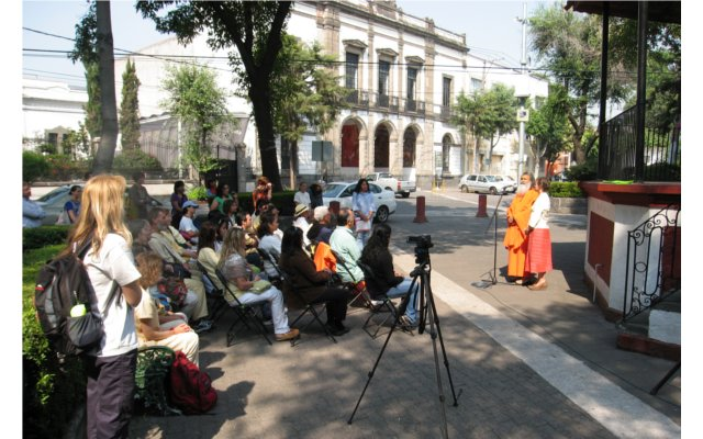The first Peace Tree in Mexico City June 8 2012