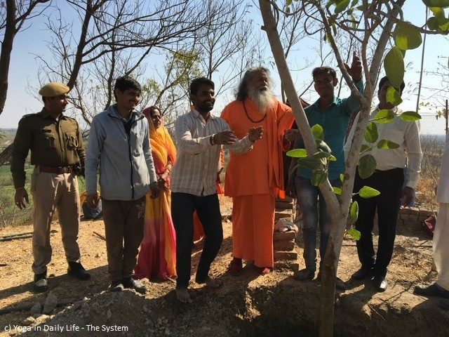 150th World Peace Tree planted by Vishwaguruji in OM Ashram