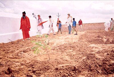 Tree planting: the first tree is planted