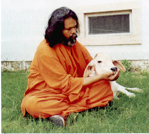 Love and compassion towards all living beings