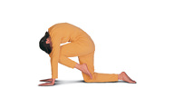 Asanas and Exercises to Strengthen the Hip Muscles