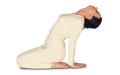 1 – 2/9 Sarva Hita Asana Extension of the Spine