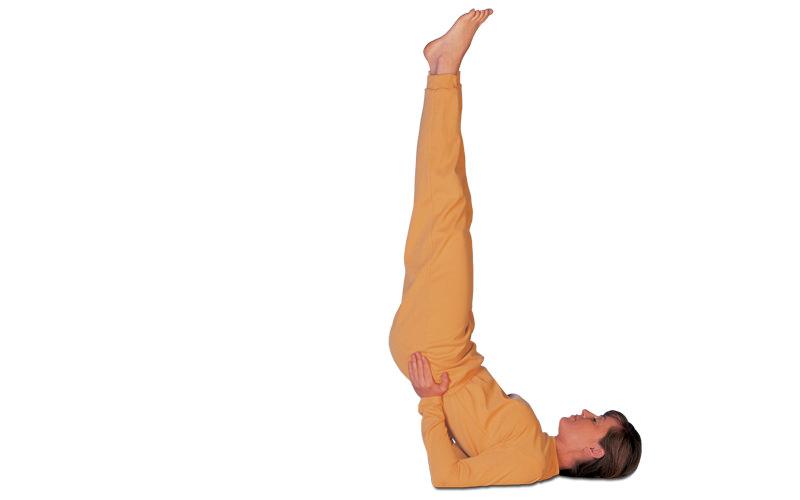 Yamuna corps roulant pied épargnants Enregistrer vos jambes Chevilles Pieds résoudre heachaches